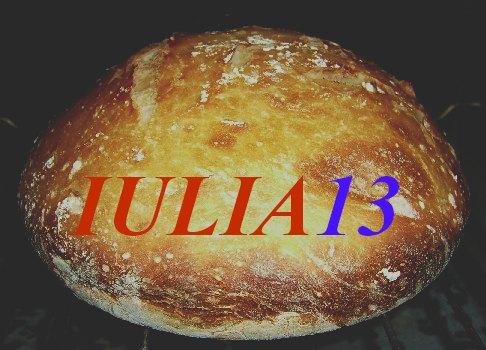 pîine cocotă (etape)