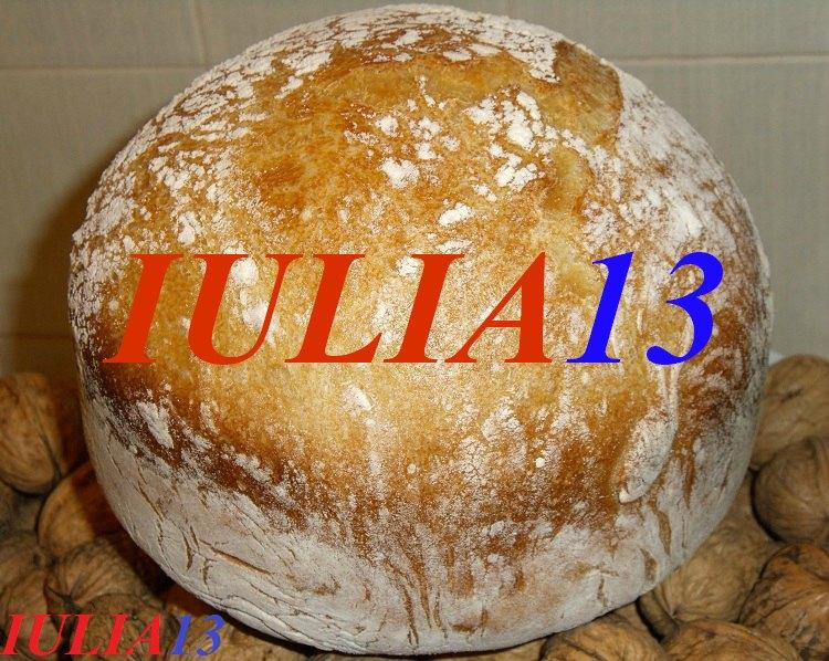 paine alba fara framantare cu ulei de nuci 2