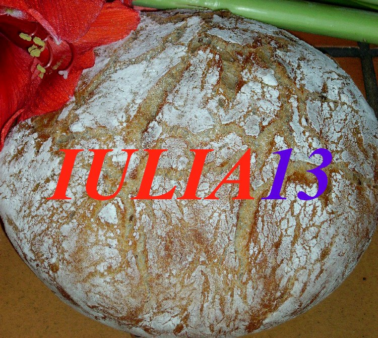 paine integrala cu orz 5