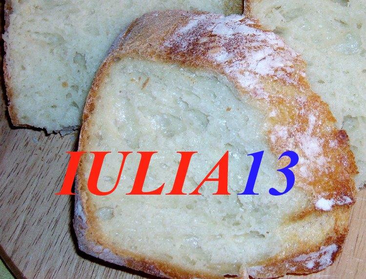 paine alba lapte miere